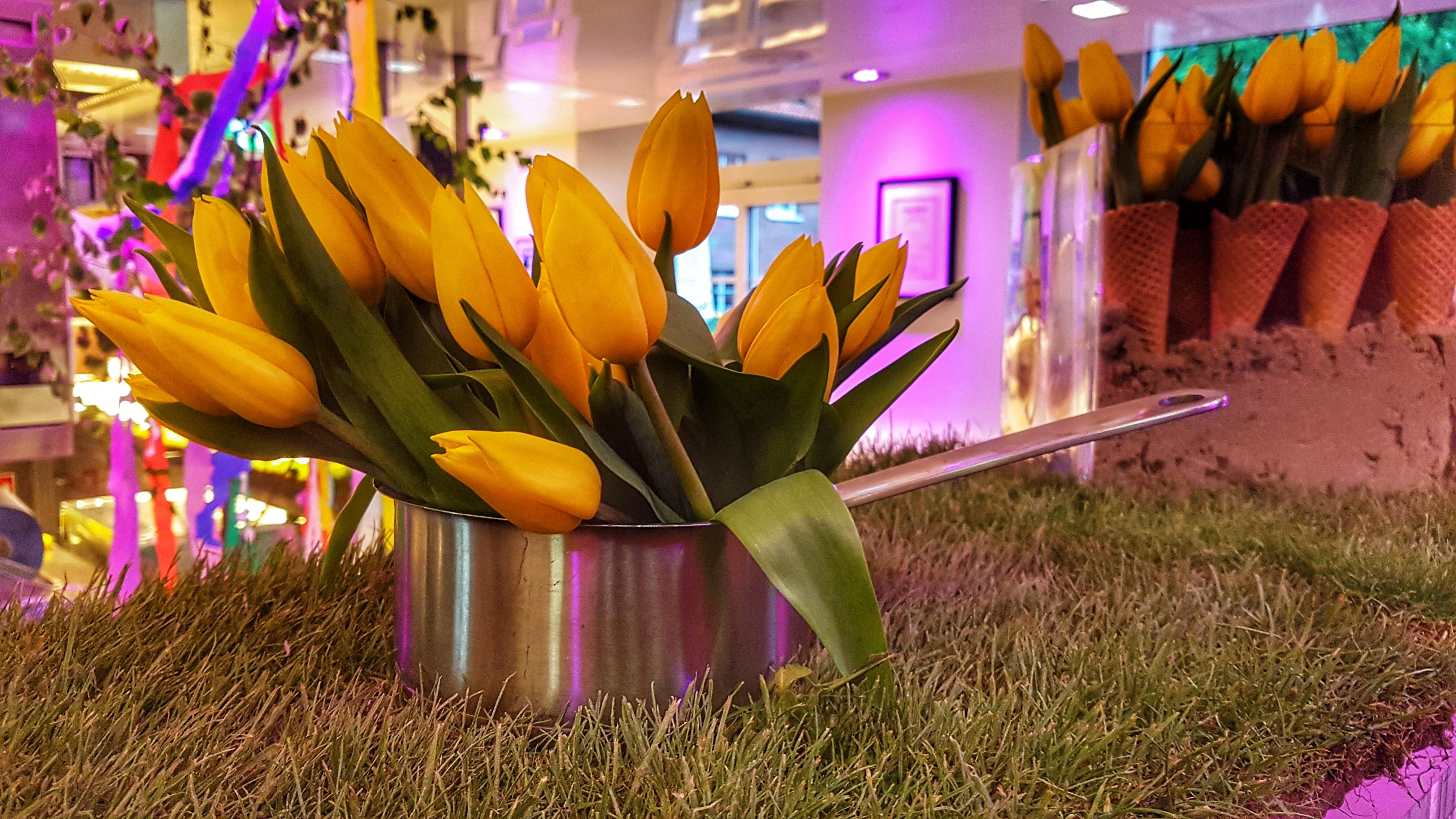 Fein Dekoration Für Küchenparty Galerie - Küchen Design Ideen ...